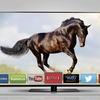 """Vizio 55"""" LED 120Hz 1080p Smart HDTV"""