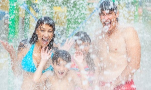 Splash Zone: All-Day Water-Park Visit for Two or Four at Splash Zone (Up to 45% Off)