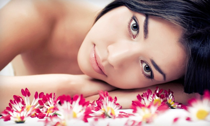 Victoria's TLC Skin Care - San Rafael: One or Three Harvest Moon Facials at Victoria's TLC Skin Care in San Rafael (Up to 54% Off)