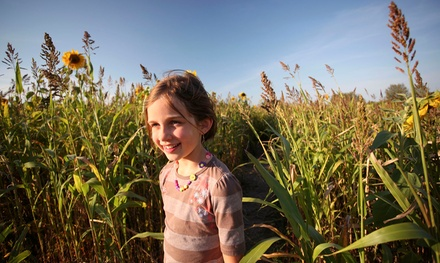 Corn-Maze Adventure for 2, 4, or 10 with a Free Hayride at Schartner Farms (Up to 50% Off)