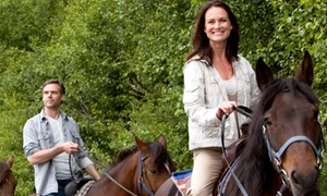 Dreamor Ranch: $102 for $185 Worth of Horseback-Riding Lessons at Dreamor Ranch