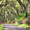 Afton Villa Gardens – Up to 55% Off Visit