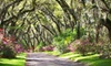 Afton Villa Gardens - 5: Visit for Two or Four Adults to Afton Villa Gardens in St. Francisville (Up to 55% Off)