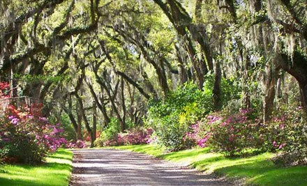 Admission for Two Adults (a $10 value) - Afton Villa Gardens in St. Francisville
