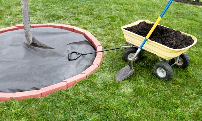 Palmer Landscaping - Fort Worth: $110 for $200 Worth of Landscaping — palmer landscaping