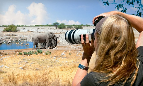 Kenyan Safari with Airfare & Accommodations