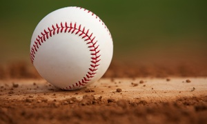 Dfw Suns Baseball Academy: $21 for $60 Worth of Baseball Lessons — DFW Suns Baseball Academy