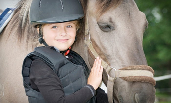 Raynee Days Riding Stable - Bonduel: $59 for a Two-Hour Horseback-Riding Birthday Party for Up to 10 Kids at Raynee Days Riding Stable ($125 Value)