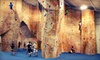The Gravity Vault - Multiple Locations: Rock-Climbing Classes at The Gravity Vault (Up to 60% Off). Four Options Available.