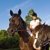 51% Off Two Horseback-Riding Lessons