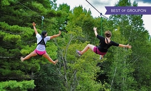 Monkey C Monkey Do: 3-Hour Zipline/Ropes-Course Outing for Two or Four or Birthday Party at Monkey C Monkey Do (Up to 51% Off)