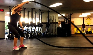 NLSC CrossFit: One Month of HIIT Boot-Camp Classes with Meal Plan for One or Two at NLSC CrossFit (Up to 75% Off)