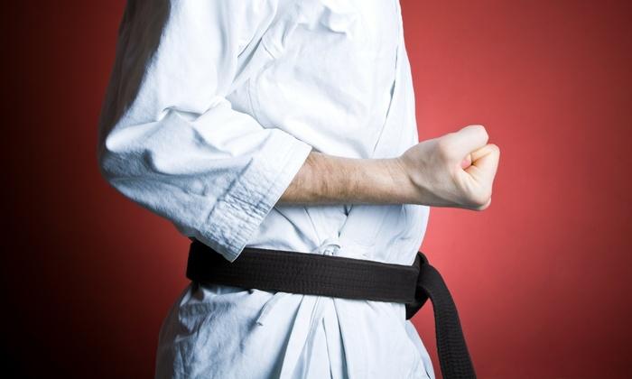 Gracie Humaita St. Louis - Weldon Spring: $71 for $129 Worth of Martial-Arts Lessons — Gracie Humaita St. Louis