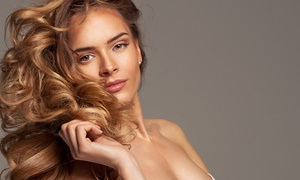Dinorah's Hair Studio: Haircut with Options for Full Color or Highlights at Dinorah's Hair Studio (Up to 52% Off)