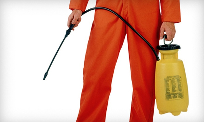 On The Spot Pest Control - Plainfield: One or Three Interior and Exterior Pest Treatments with Ant Inspections from On The Spot Pest Control (Up to 85% Off)