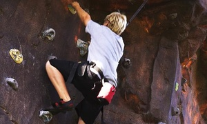 The Ultimate Climbing Gym: One- or Two-Day Rock-Climbing Pass for Two at The Ultimate Climbing Gym (Up to 51% Off)