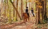 Up to 58% Off Horseback Riding
