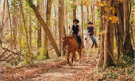 Horseback-Riding Lessons and Trail Rides at Muddy Water Equestrian Park (Up to 59% Off). Six Options Available.