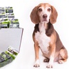 Annual Supply of Eco Poop Bags for Dogs