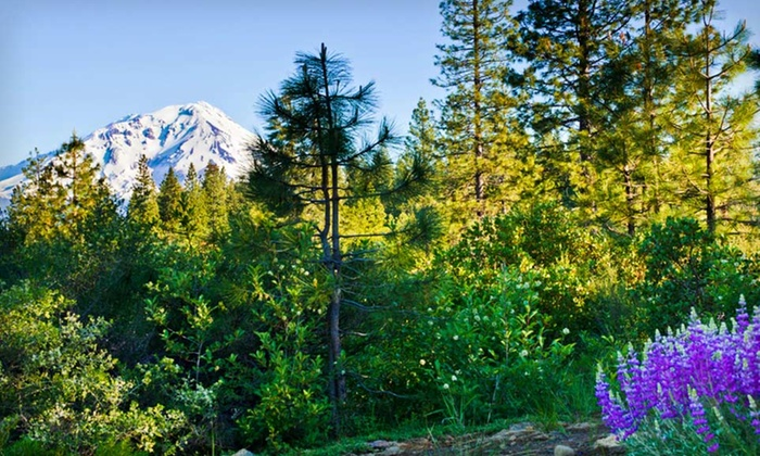 Mount Shasta Hotel and Lodge - Mount Shasta: One, Two, or Three Night Stay with Wine at Mount Shasta Hotel and Lodge in California