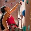 2 uur klimmen of beginnerscursus