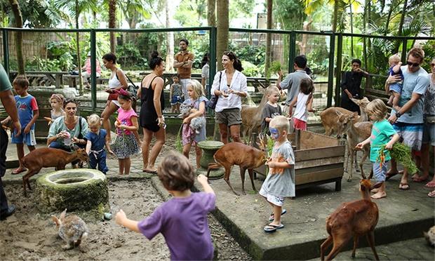 Bali: Admission to Bali Zoo 0