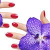 60%Up to 64% Off Gel Manicures and Pedicures