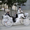 Up to 57% Off Ride from NorthStar Carriage