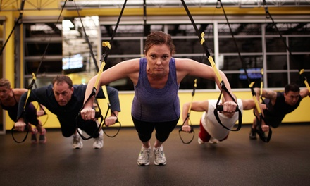 Four or Eight One-Hour TRX Training Sessions at Inflicting Fitness Training Center (Up to 80% Off)