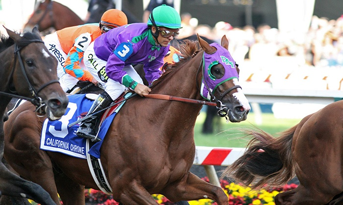 TVG: $10 for a $20 Credit Towards Online Bets on the Belmont Stakes at TVG