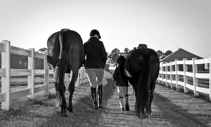 Coastline Farm - Virginia Beach: Two 30- or 60-Minute Private Horseback-Riding Lessons at Coastline Farm (Up to 50% Off)
