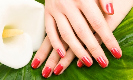 One, Two, or Three Stress-Relieving Mani-Pedis at Drew James Aveda  Salon Spa (Up to 54% Off)