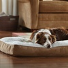 Animal Planet Memory Foam Sherpa Pet Beds