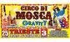 Circo David Orfei, Trieste