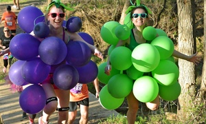 Wicked Wine Run - Monterey: $30 for Wicked Wine Run 5K with T-shirt, Wine, and Wineglass on Saturday, September 19 ($45 Value)