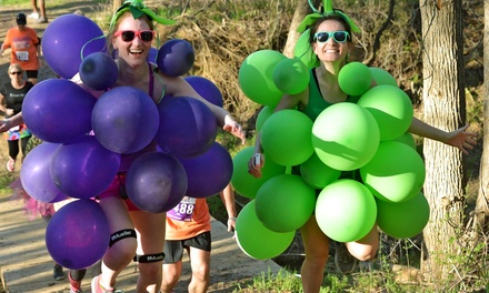 $30 for Wicked Wine Run 5K with T-shirt, Wine, and Wineglass on Saturday, September 19 ($45 Value)