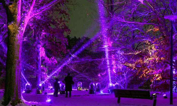 The Morton Arboretum - The Morton Arboretum: Illumination: Tree Lights at The Morton Arboretum on November 21–December 18 (Up to 36% Off)