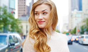 Hair Design by Adrianna: Haircut and Blow-Dry with Optional Highlights or Color at Hair Design by Adrianna (Up to 51% Off)