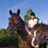 53% Off Horseback-Riding Lessons