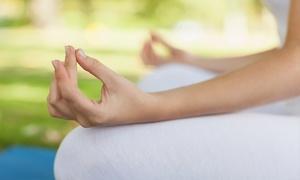 TRIPURA SUNDARI: 10, 20 o 30 lezioni di yoga nel parco dei Giardini Margherita da Tripura Sundari (sconto fino a 83%)