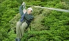 Griffin Park - Cherokee Village: Two or Four Zipline Rides from Griffin Park (Up to 55% Off)