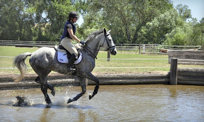 Byron Equestrian - Livermore-Pleasanton: One, Three, or Five 45-Minute Horseback Riding Lessons at Byron Equestrian (Up to 70% Off)