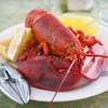 Black Point Seafood: Delivered Live Maine-Lobster Dinner for Four or Six from GetMaineLobster.com (Up to 57% Off)