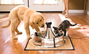 Drinkwell Stainless 360 Pet Fountain Bundles
