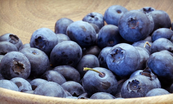Roberts' Family Farm - Chesterfield: $10 for $20 Worth of Pick-Your-Own Blueberries at Roberts' Family Farm in Chesterfield