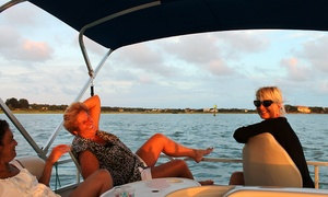 White Ibis Tours: Private Pontoon Tour for Up to Six from White Ibis Tours (52% Off)
