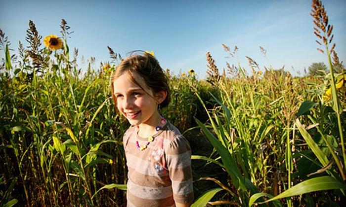 Fleitz Pumpkin Farm - Oregon: Four Corn-Maze Trips and Hayrides or Six Corn-Maze Trips at Fleitz Pumpkin Farm (Up to 58% Off)