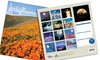 Nature-Lovers' Calendars: Nature-Lovers' Calendars. Multiple Themes Available.