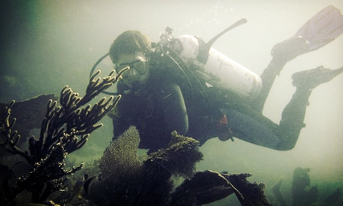 ASP Diving - Fort Wayne: $179 for PADI Open-Water Scuba-Certification Course from ASP Diving ($399 Value)