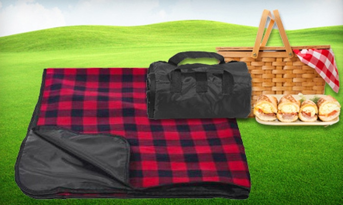 12 For A Waterproof Picnic Blanket 24 95 Value Six Styles Available